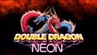 Double Dragon HD, Double Dragon: Neon, Double Dragon WayForward, Double Dragon Xbox 360, Double Dragon PS3, DD Neon