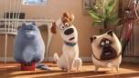 Secret Life of Pets, Pets, Μπάτε Σκύλοι Αλεστε, Life of Pets, ταινία Pets